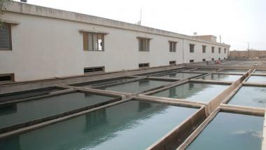 أمانة بغداد تؤكد أن جميع مشاريع ومجمعات إنتاج الماء الصافي تعمل بكامل طاقاتها