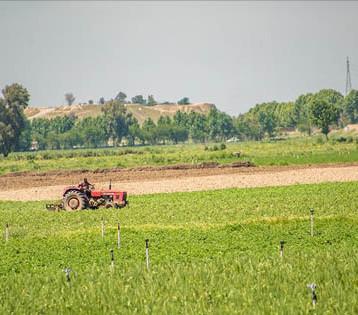 الصليب الأحمر يدعم نحو 550 مزارعاً وفلاحاً بسهل نينوى
