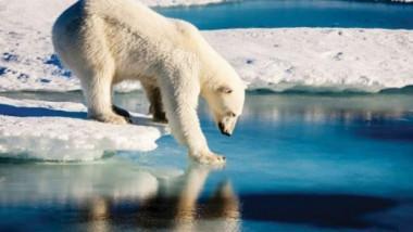حرارة الجو سترتفع أكثر ما لم تعالج الانبعاثات المحفزة للتغيّر المناخي