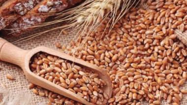 وزير التجارة يوقع اتفاقا لشراء القمح  والرز الأميركي لدعم البطاقة التموينية