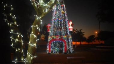 نصب أشجار الميلاد في بغداد إحتفالاً بولادة السيد المسيح