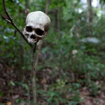 حتى الموتى لا خلاص لهم من الباحثين !