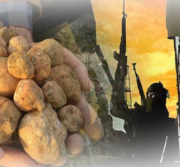 امين عام وزارة البيشمركة: العراق بحاجة الى حرب فكرية لتجفيف منابع الارهاب