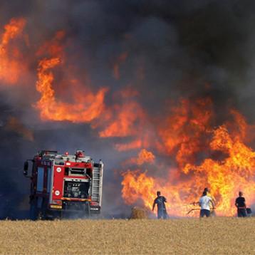 حرائق حقول الحنطة المفتعلة إرهاب يستهدف اقتصاد البلاد تقوده مافيات تدار من الخارج