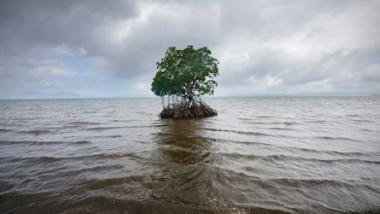 خبراء يحذرون من ارتفاع كارثي لمستوى المحيطات بحلول 2100
