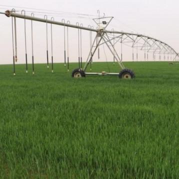 خسائر الفلاحين جراء حرائق حقول الحنطة في ديالى اكثر من 700 دونم