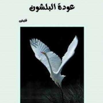 (عودة البلشون) شعرية باذخة، صورة مبهجة، عمق المضمون وقفلة مدهشة للقاص عبد الكريم الساعدي