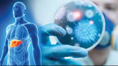 الفيروسات الكبدية تتسبب في وفاة مليون شخص سنويا في العالم