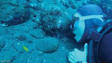 عنكبوت البحر لتنظيف الأسنان