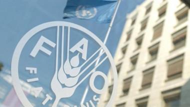 «الفاو» تكشف فقدان وهدر  14 في المائة من إنتاج الغذاء في العالم