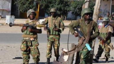ارتفاع حصيلة الجنود الماليين الذين قُتلوا في «هجوم إرهابي» الى 53