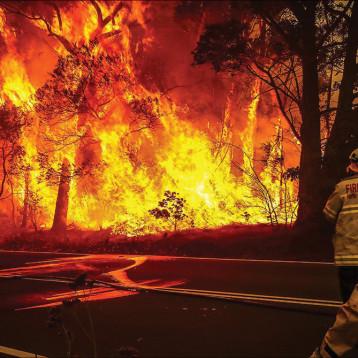 الحرائق تلتهم رئة الأرض والتغير المناخي والبلاستك ما زالا يهددان العالم