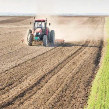 انخفاض نسبة التصحر في البلاد الى 30 % خلال العامين الماضيين