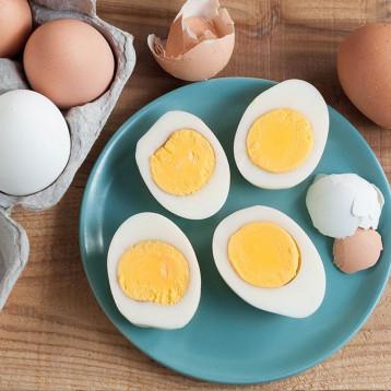 تناول بيضة كل يوم لن يؤثر على القلب والكوليسترول