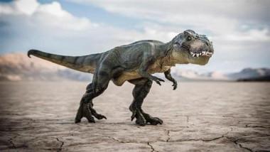 الكشف عن آخر وجبة لديناصور قبل 110 ملايين سنة