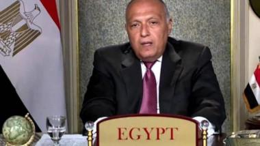 سامح شكري في مجلس الأمن: مصر ترفض تهديد أمنها المائي