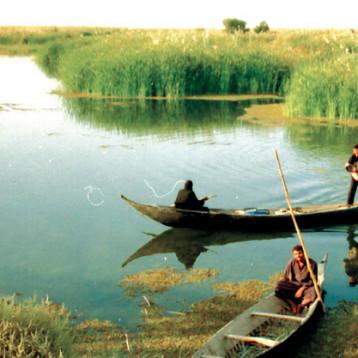 وزير الزراعة يؤكد أن حماية المسطحات المائية والبحيرات تقع على عاتق الجهات المختصة